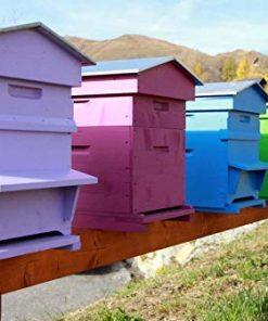 Peinture ruche apiculture naturelle NATURA – 2,5L