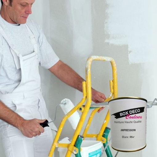 Peinture impression murale acrylique blanc aspect mat Aqua Déco -750ml