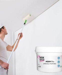 peinture-speciale-plafond-10L